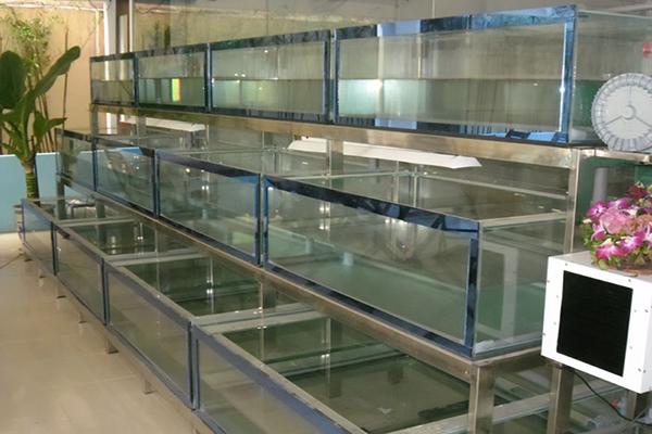 Tìm hiểu các loại bể cá hải sản cho nhà hàng giá rẻ
